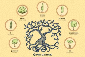Astrologie celtique