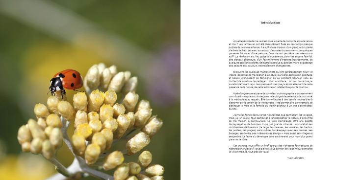 Pages - Faune en Côte d'Émeraude