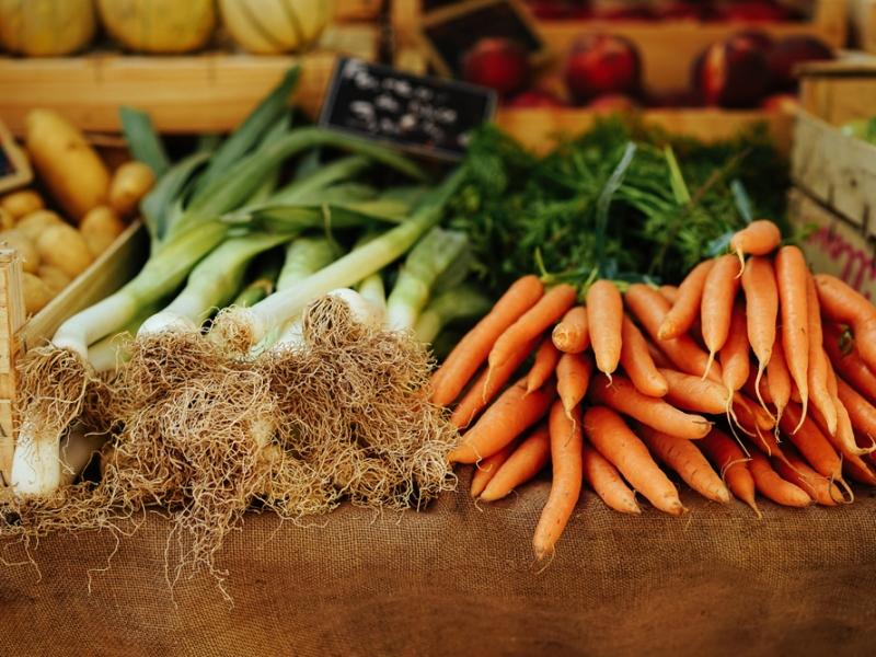 Rédaction web - Gastronomie
